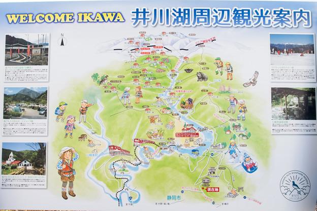 井川周辺観光案内図