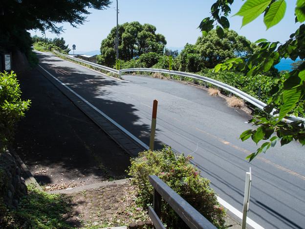 御浜岬への分岐
