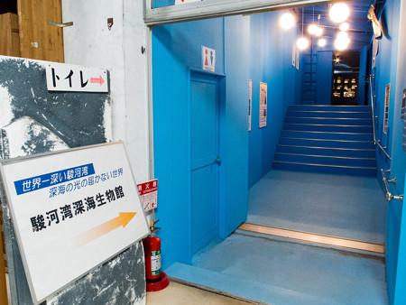 駿河湾深海生物館へと続く廊下