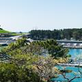 Photos: 展望台から眺める田子の浦港入口