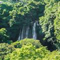 Photos: 猿棚の滝