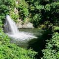 銚子ヶ淵の滝