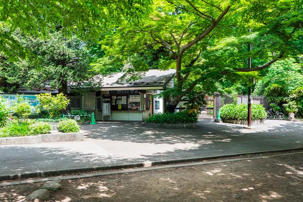 Photos: 井の頭自然文化園 水生物園 弁天門入口