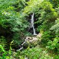 天子の七滝 観音の滝