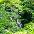 Photos: 天子の七滝 観音の滝