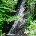 Photos: 天子の七滝 しずくの滝