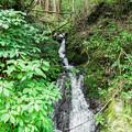 林道 石神峠線脇の小川