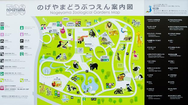 野毛山動物園 案内図