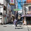 Photos: 桜木町駅前 動物園通り