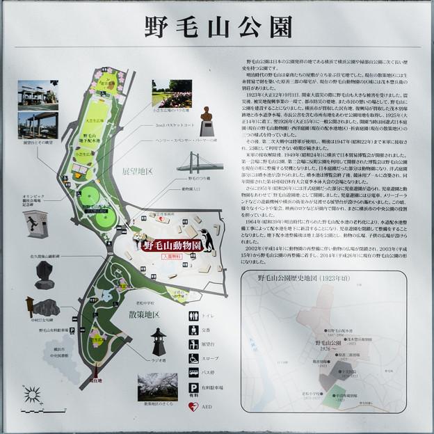 野毛山公園 案内図