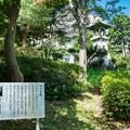 Photos: 野毛山公園 ラジオ塔