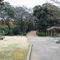 Photos: 野毛山動物園 裏門