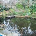 Photos: 野毛山動物園 大池