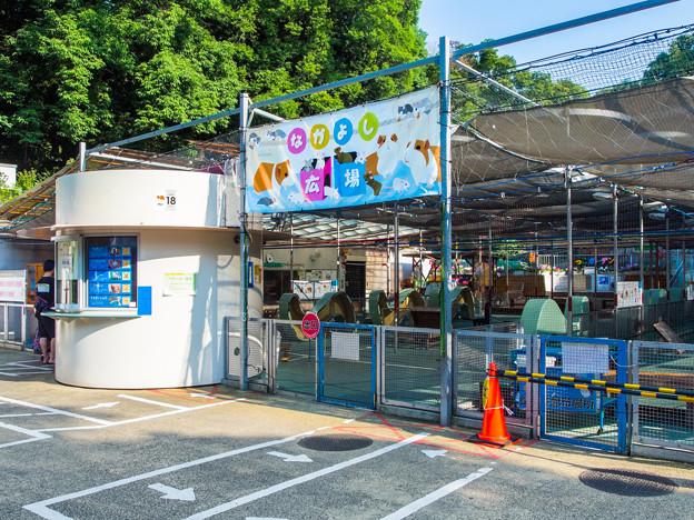 野毛山動物園 なかよし広場