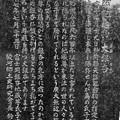 大銀杏の碑