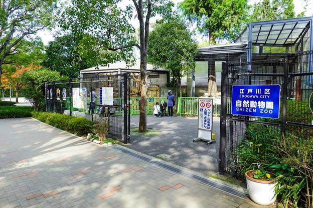 江戸川区自然動物園 南口