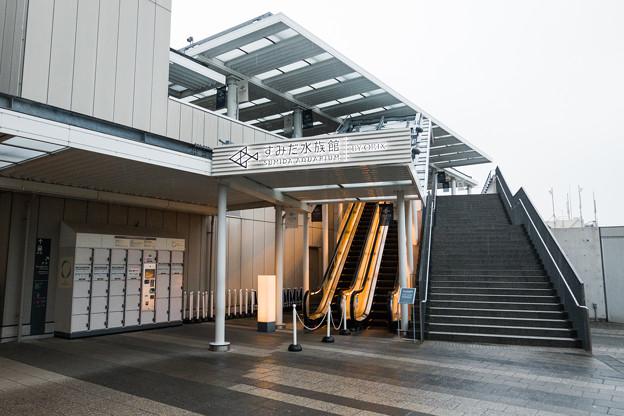 Photos: すみだ水族館へ続くエスカレーター