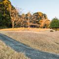 Photos: 宮本公園の芝生広場
