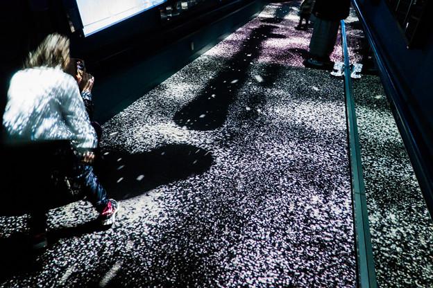 クラゲ万華鏡トンネルの演出