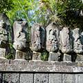 Photos: 釈迦如来と六観音像