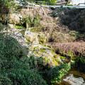杉田の大滝