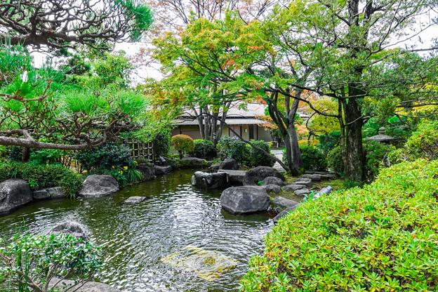 Photos: 湧心池