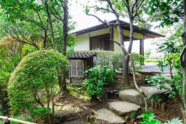 Photos: つつじ亭