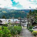 井川神社参道から眺める井川湖
