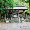 井川神社 拝殿