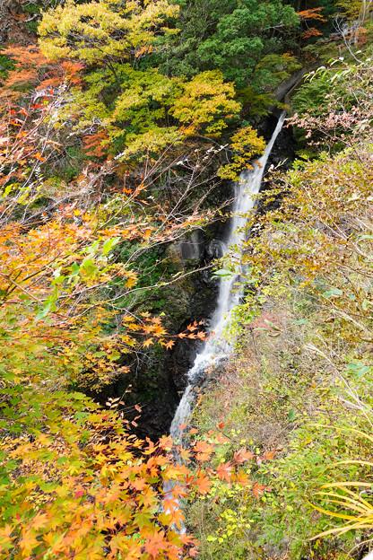 井川駅から流れ落ちる滝