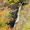 Photos: 井川駅から流れ落ちる滝