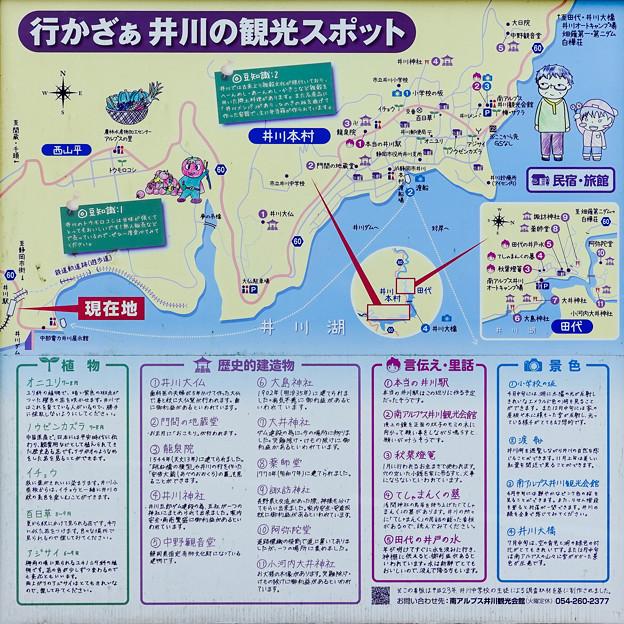 井川湖の観光スポット