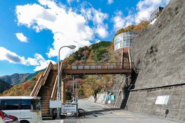 井川展示館へ続く歩道橋