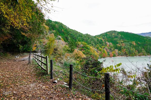 井川湖 廃線小路
