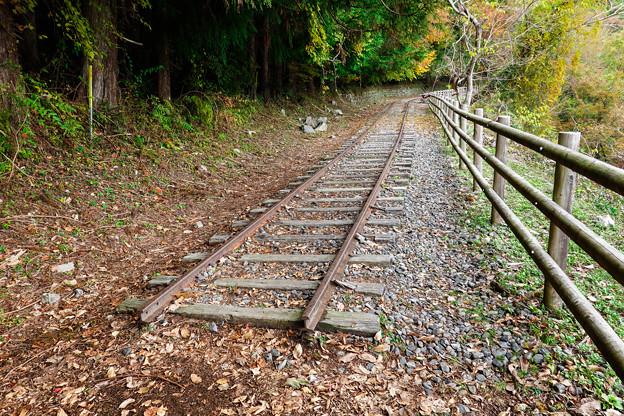 廃線小路にのこる線路