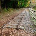 Photos: 廃線小路にのこる線路