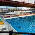 Photos: ショースタジアム横のプール