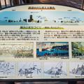 Photos: 野毛山公園展望台から見える景色 北