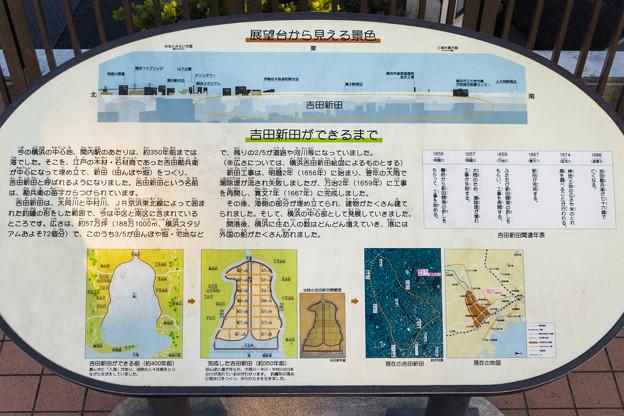 野毛山公園展望台から見える景色 東