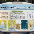 Photos: 野毛山公園展望台から見える景色 東