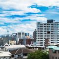 Photos: 野毛山からの景色 横浜ベイブリッジ