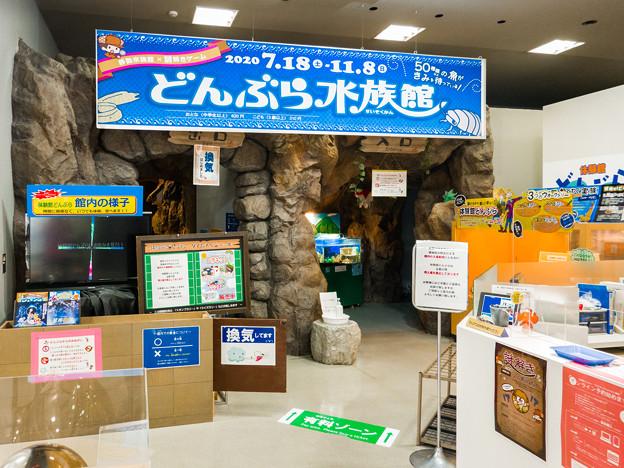 Photos: 体験館どんぶら 入口