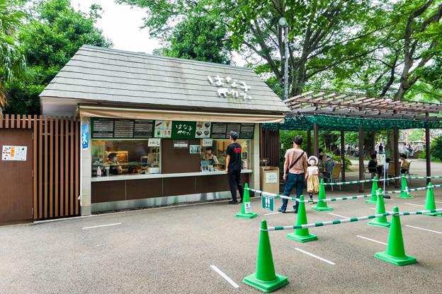 Photos: はな子カフェ