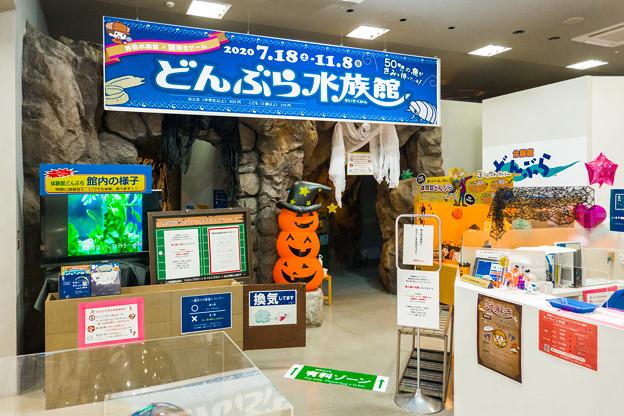 体験館どんぶら 入口(ハロウィン水族館Ver.)