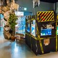 Photos: どんぶら水族館  危険な魚コーナー