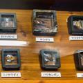 Photos: 鈴木香里武のひもの標本コレクション