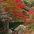 静かな ゞ…里の秋