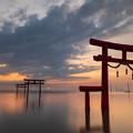 大魚神社の海中鳥居の朝
