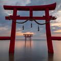 大魚神社の海中鳥居の朝  2