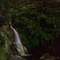 見返りの滝 ホタル
